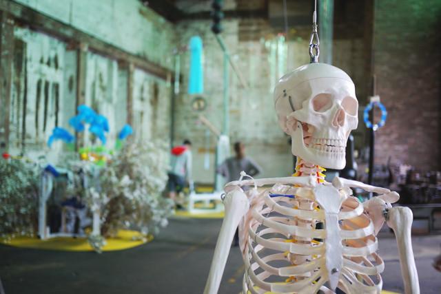 biennale_2014_skull