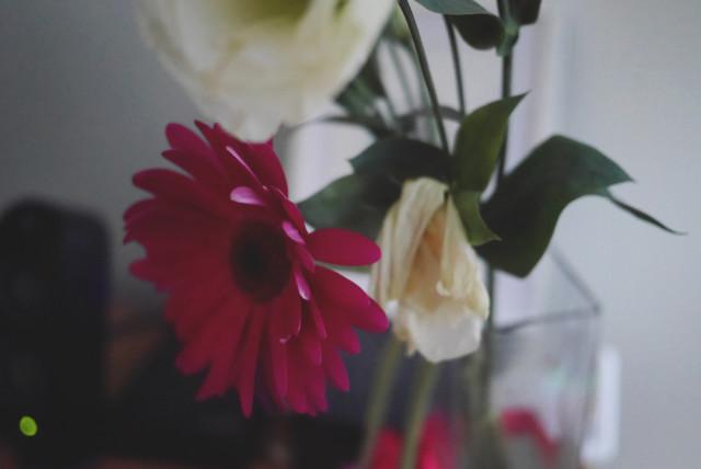 jess_flowers