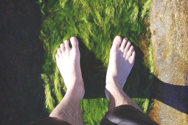 feet_moss