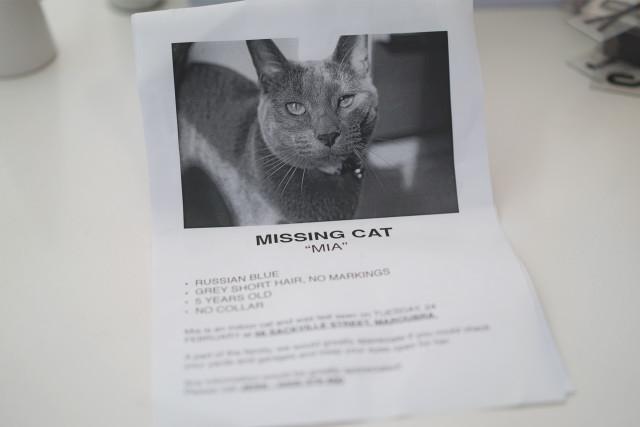 mia_missing