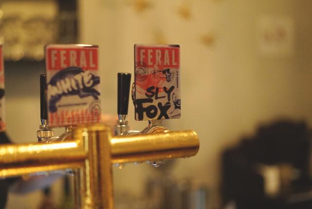 porkd_sly_fox_beer
