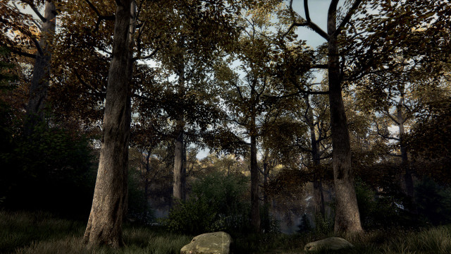 The-Vanishing-of-Ethan-Carter2