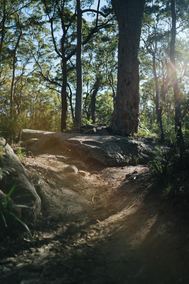 loftus_trail