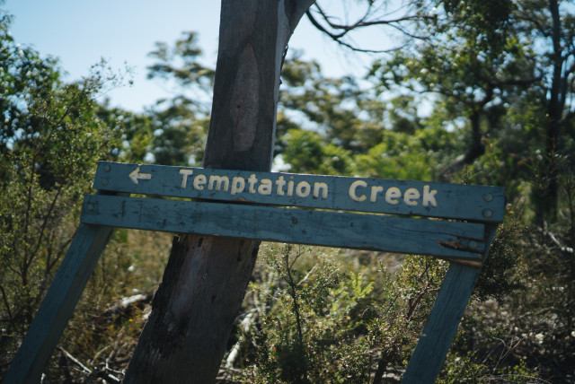 temptationcreek_sign