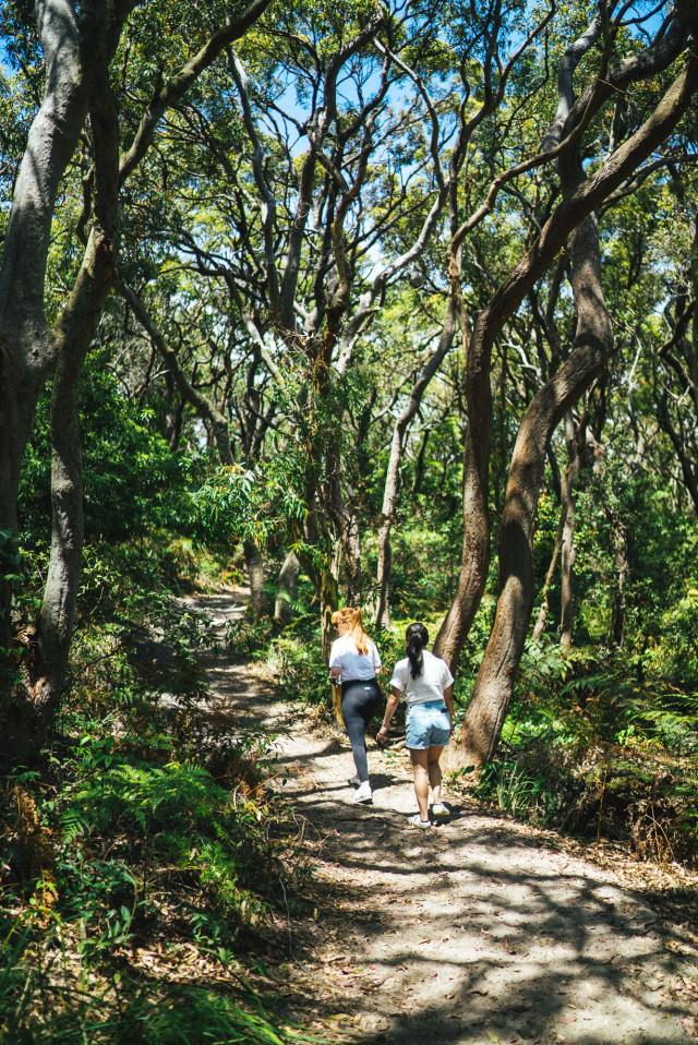 naturewalk2